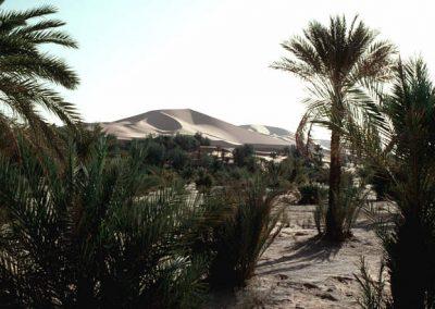 algeria6