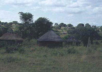 swaziland9