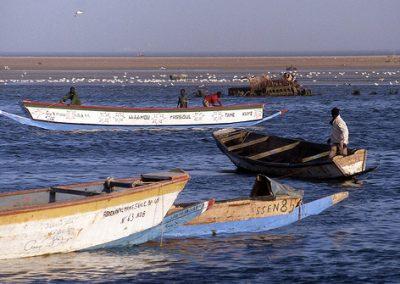mauritania6