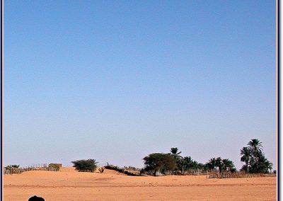 mauritania8