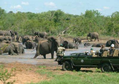 sud africa1