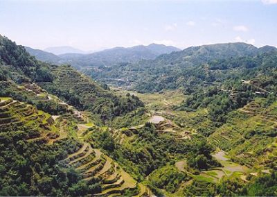 Rice_Terraces_Banaue