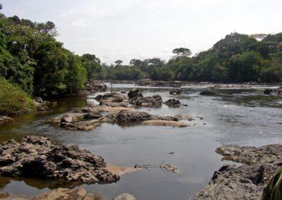 1200px-Epulu_Okapi_Reserve