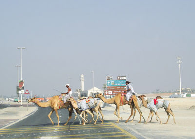 emirati arabi uniti9